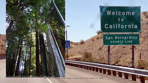 California Redwoods photo by CSF Registrar Gwen Rasmussen, Welcome to California photo: Megan J Wynne copyright 2020