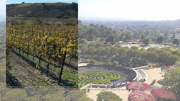 Central Coast vineyard. photo by Patricia Gill copyright 2016, Los Angeles from Getty Center. photo: Patricia Gill copyright 2016