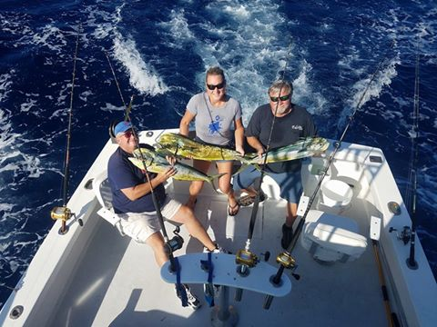 Some nice Mahi out here today!