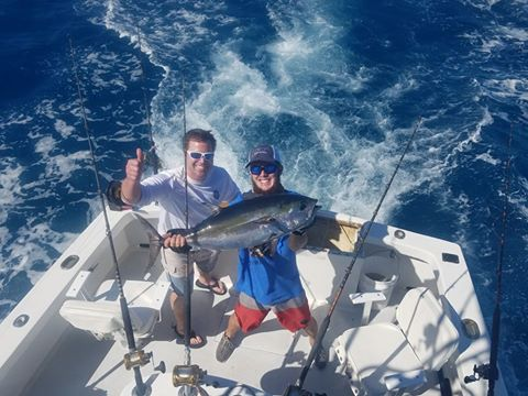 Nice tuna today