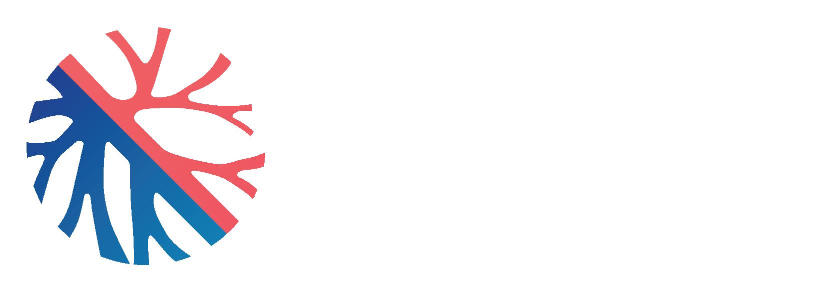 Vascular Health Bronte