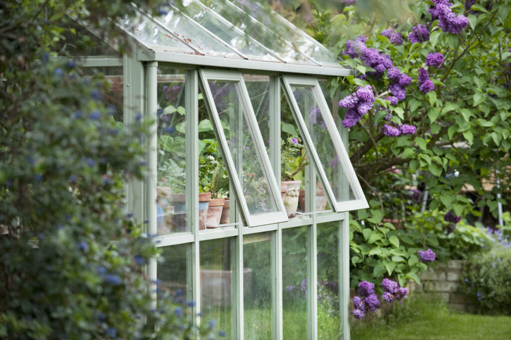 Backyard greenhouse as a way to beautify property and to grow plants