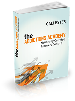The Addictions Academy - Recovery Coaching Level 1