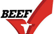 State Beef Council Explores Digital Advertising