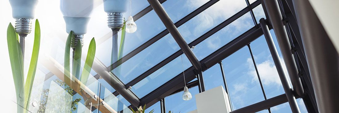 Digital composite of Plants with light bulbs and window transition depicting energy efficient windows