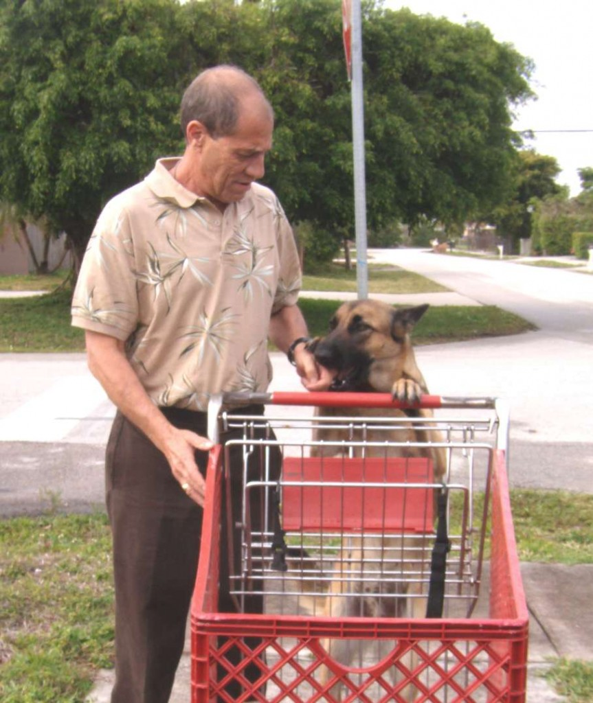 Jay teaches Max how to push a shopping cart. Photo by Marla E. Schwartz.