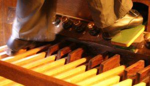 Alexander-Technique-Albuquerque-NM-organ