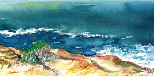 above gordons bay | 2009 watercolour on canson | size: 40 x 13cm
