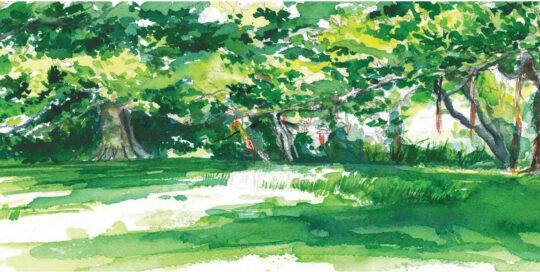 when we go down to the wolfy wood | 2010 watercolour on canson | size: 40 x 13cm