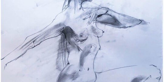 lunge    2005   46cm W x 65cm H   charcoal on cartridge paper