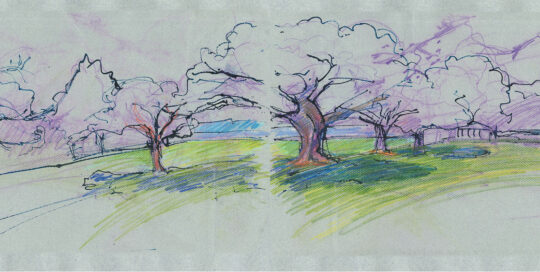Rushcutters Bay park looking northwards | colour pencil and ink, canson paper