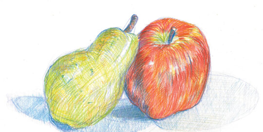 an unlikely pair | colour pencil, canson paper