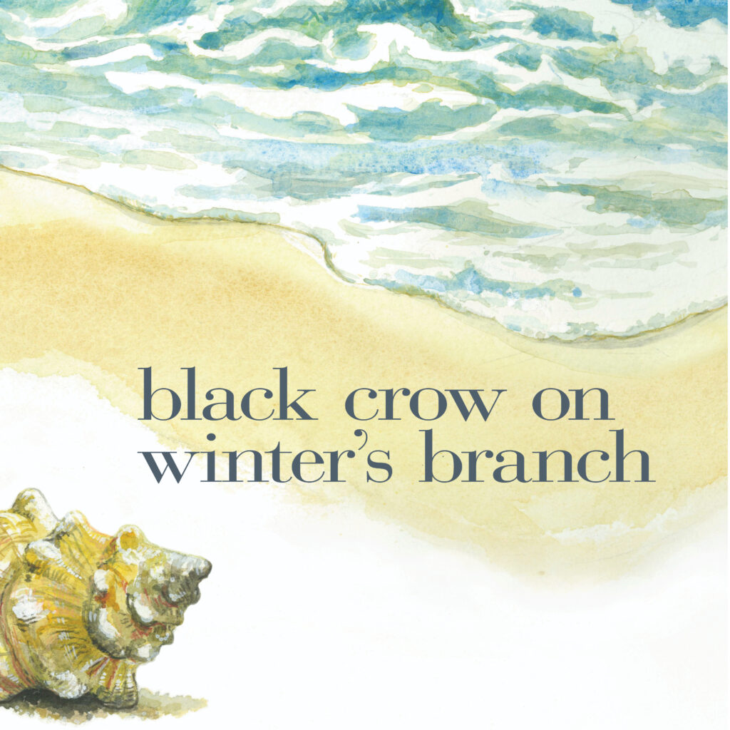black crow on a winter's branch