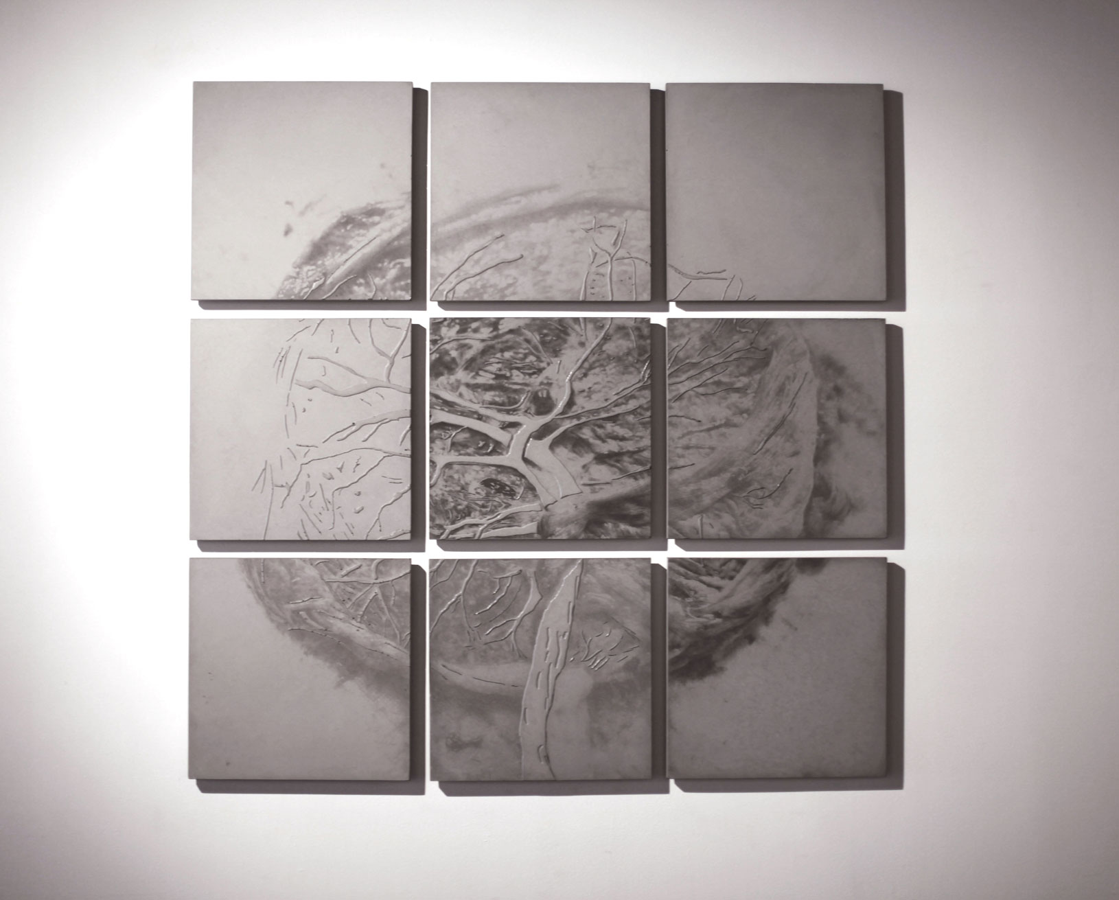 Wall sculptures of 9 concrete relief tiles in a grid, forming a placenta.