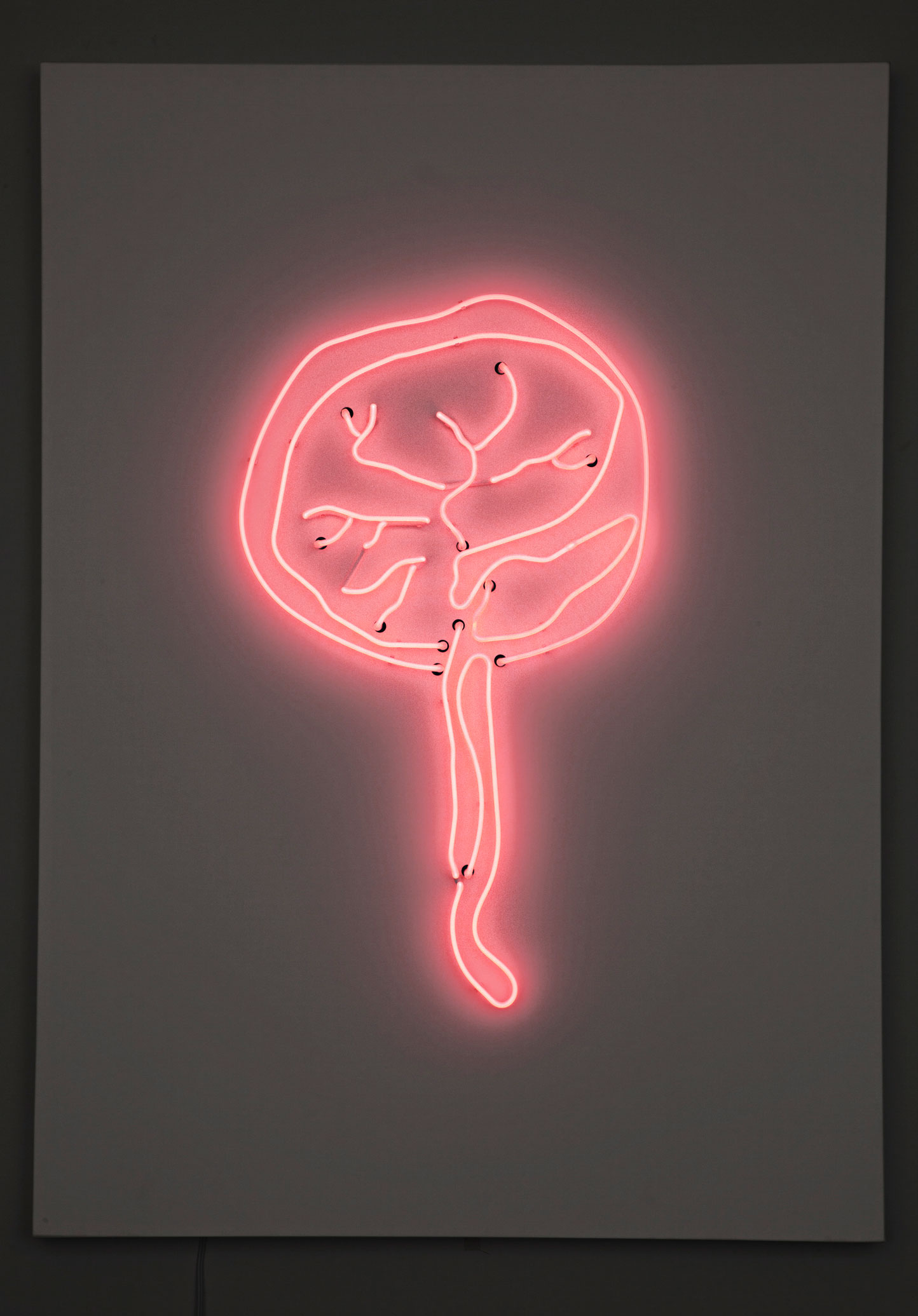 Pink neon abstract wall art of the strong and vibrant life giving placenta.
