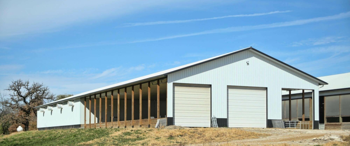 award winning livestock building for sheep
