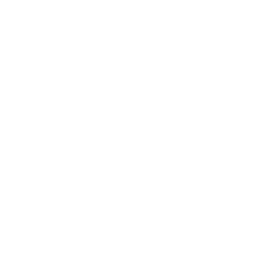 icon-VHS-white