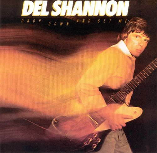del shannon tom petty drop down cover