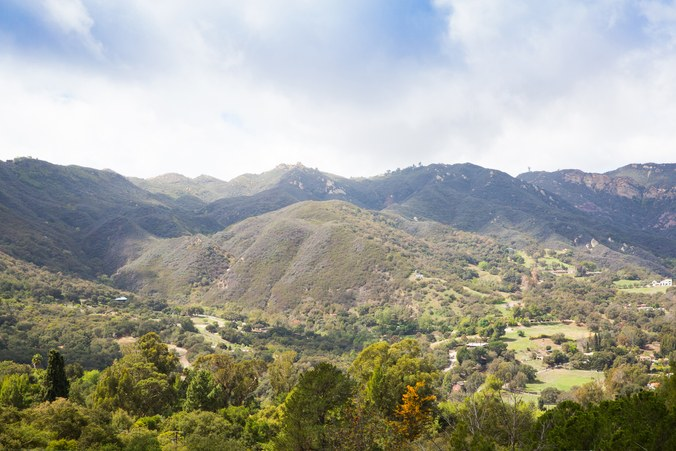The view from Alexander Payne's house in Topanga Canyon. Photograph by Darcy Hemley.