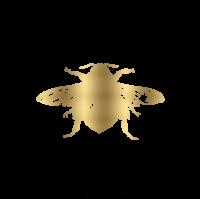 Sonny Bea's Website Logo