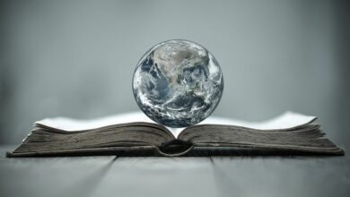 Earth-globe-on-a-book-cm