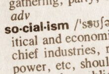 socialism defined in the dictionary