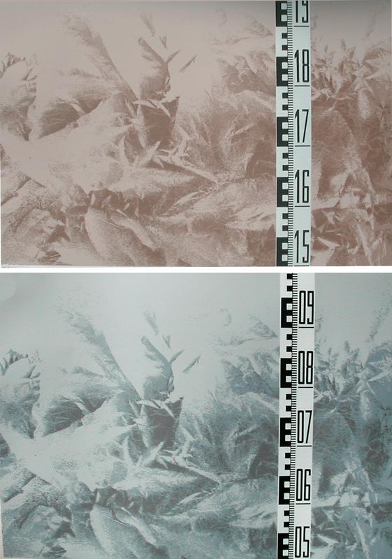 קנה מידה 1978.הדפס רשת צילומי, על נייר נטול עץ  56 על 78 ס''מ  [הוצג בגלריה עמליה ארבל]
