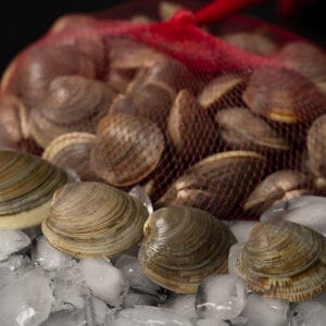 Jersey Shore Littleneck Clams available for purchase on the Cape May Salt Oyster Farms website. They are sustainably-grown and are harvested by hand to ensure quality.