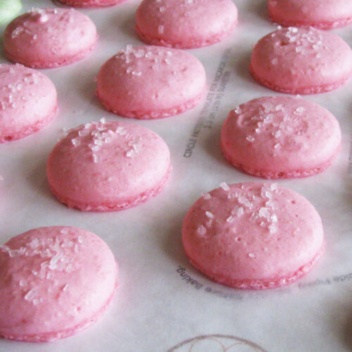 Bubblegum Macarons After Baking