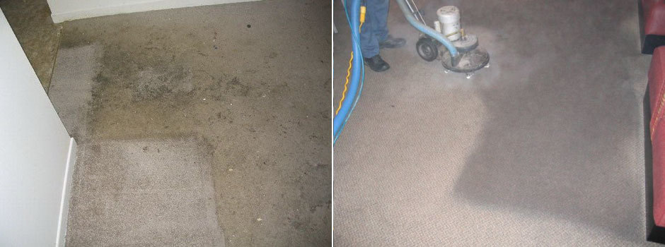 Carpet Cleaning St Catharines Niagara (14)
