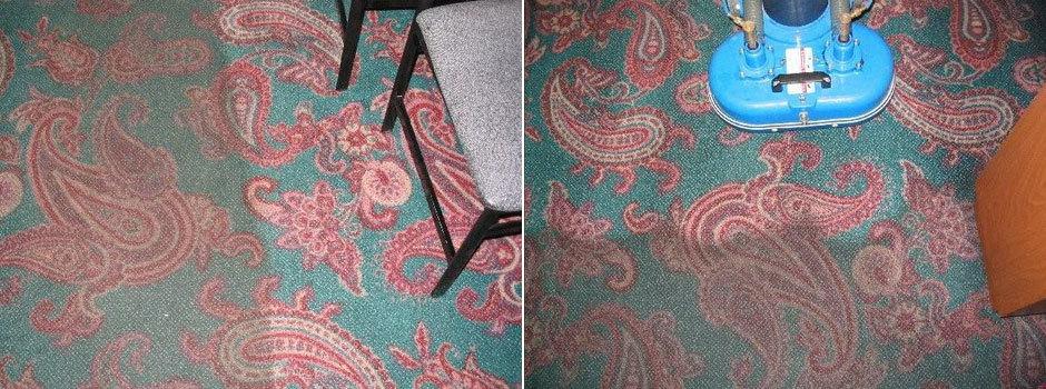 Carpet Cleaning St Catharines Niagara (18)