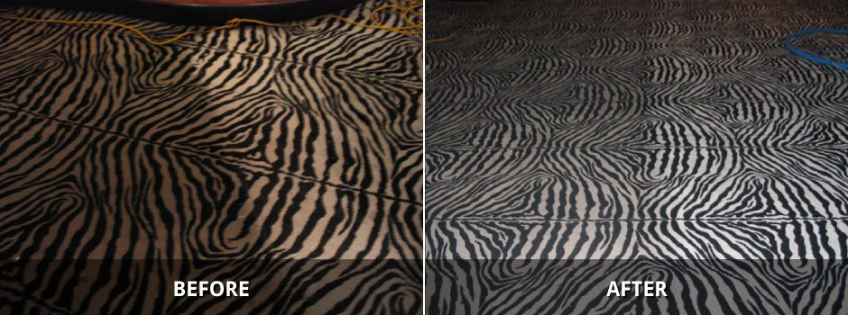 Carpet Cleaning St Catharines Niagara (22)