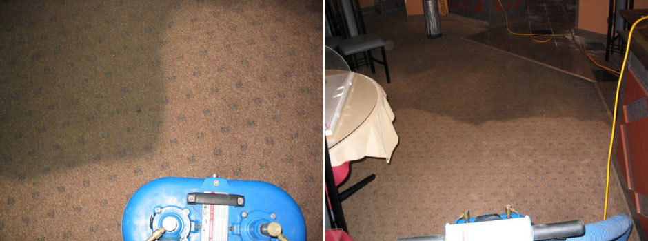 Rug & Carpet Cleaning Niagara