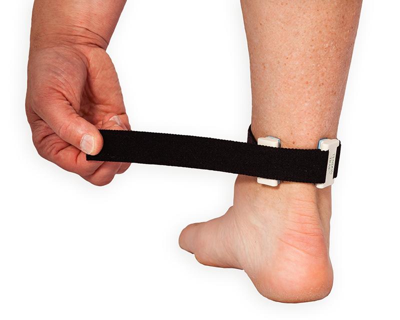 tendon track Achilles