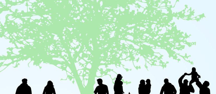 Family tree of 400 million people shows genetics has limited influence on longevity