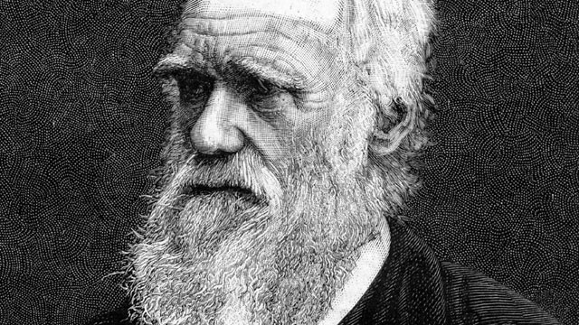 """THIS DAY IN HISTORY: 1859 """"Origin of Species"""" is published"""