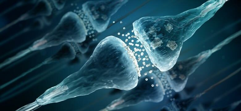 Study reveals fundamental insight into how memory changes with age
