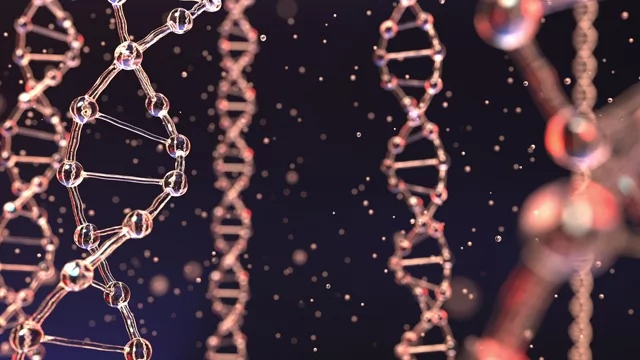 """Mother's Empathy Linked to """"Epigenetic"""" Changes to the Oxytocin Gene"""