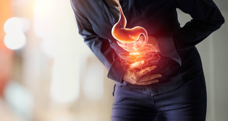 Microbiome Stress Hormone by Dr. S. Rudack