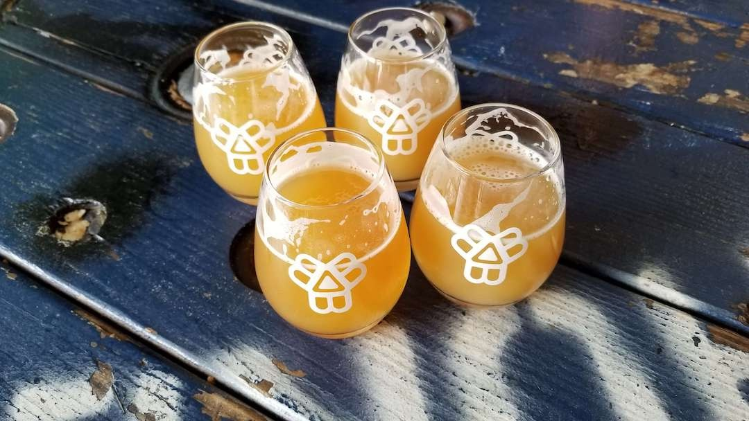Bissell Brothers Glasses with Beer