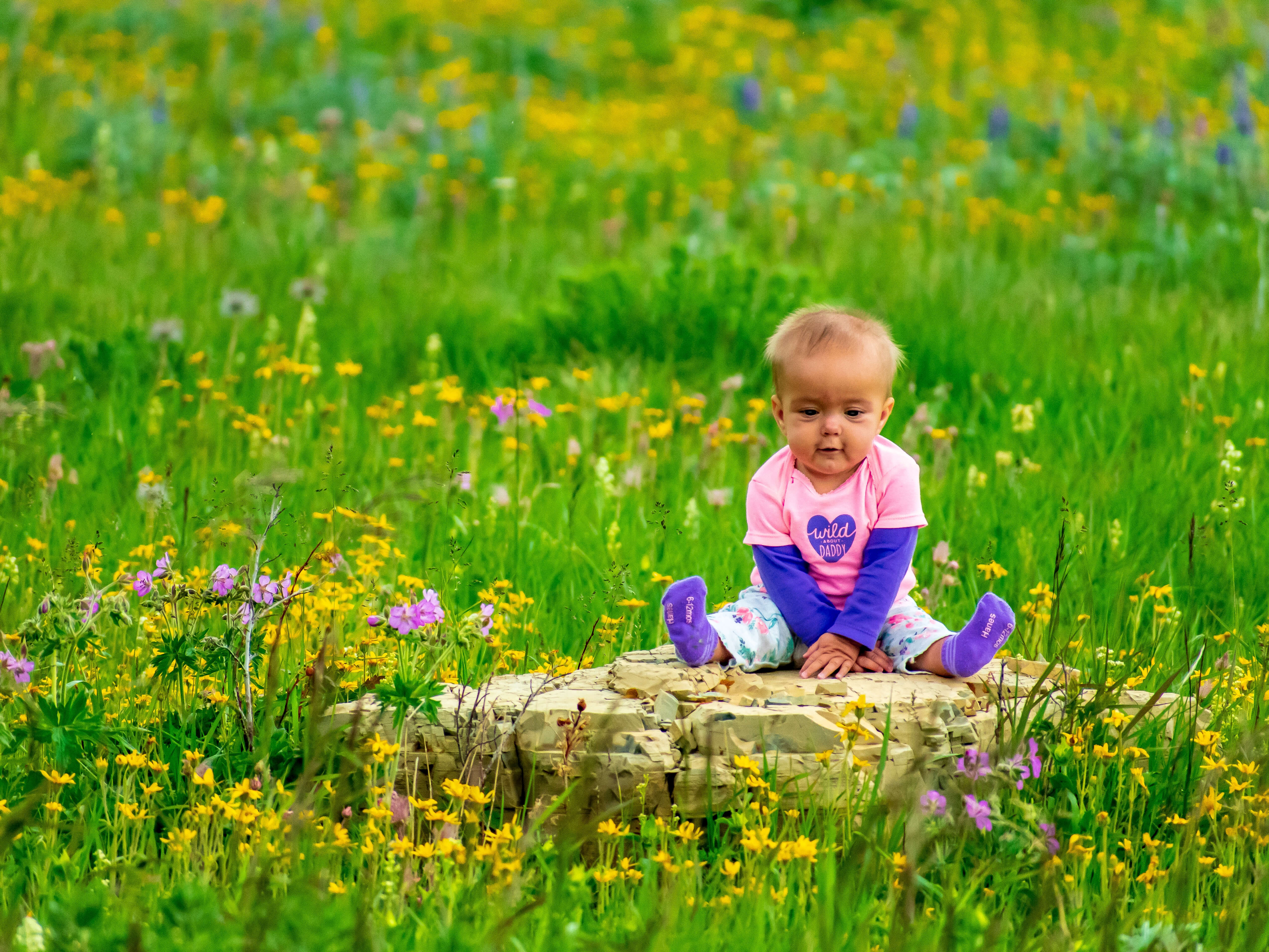 Baby looking at wildflowers sitting on rock