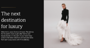 amazon luxury store