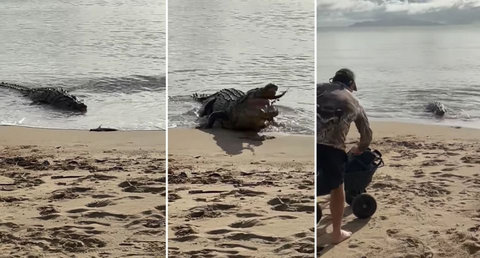 Woman Spots 'Monster' During A Trip To The Beach