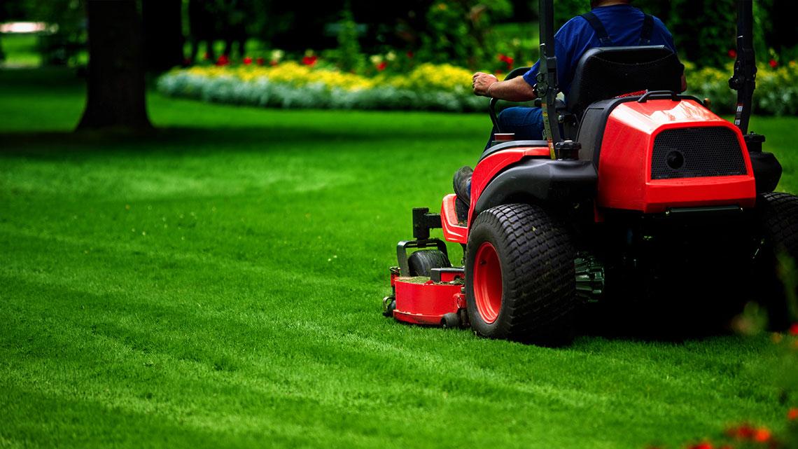 We Work Hard on Your Yard