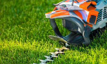 Lawn Care Tips for the Spring Season