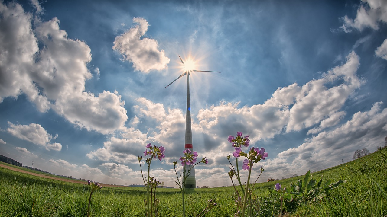 Renewable Energy – A Guide to 4 of the Top Sources
