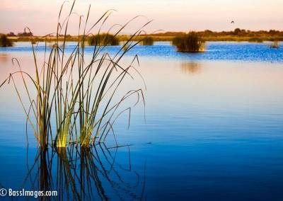 05Santa Clara River estuary facing east