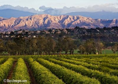 18 Ventura County Scenics