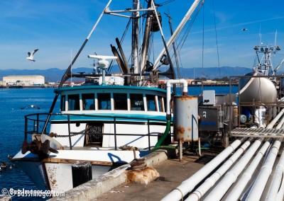 19 Port of Hueneme_4969