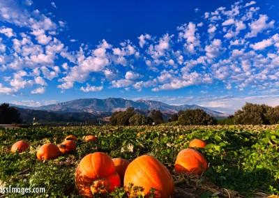 21 Ventura County Scenics